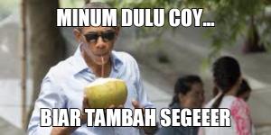 kelapa2